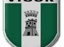 vigor lamezia logo
