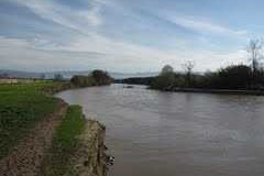 fiume_mesima