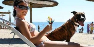 vacanze-con-animali