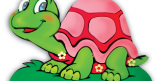 tartaruga rosa_400