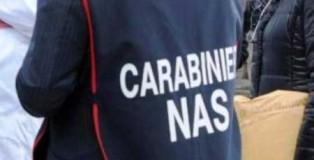 carabinieri nas_ansa