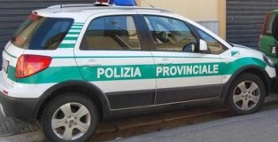 Autovettura Polizia Provinciale