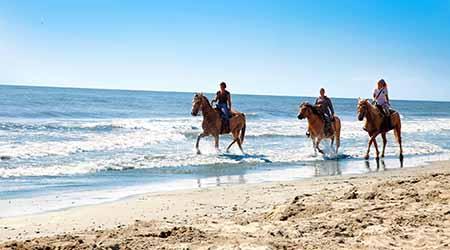 A cavallo in riva al mare Parco Naturale del Delta del Po (Ro) – 15 maggio 2015 apre la stagione estiva a Barricata Holiday Village. Lodge tent, chalet e campeggio in un villaggio fronte mare