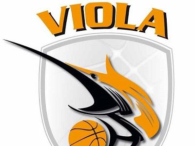 Viola Basket, avvenuto pagamento dei Nas federali Decisivo l'intervento di alcuni imprenditori cittadini