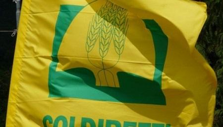 """""""Bollini allarmistici sono contro produzioni calabresi"""" Lo dichiara Coldiretti Calabria"""