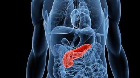 Da farmaco antipsicotico speranze per tumore pancreas Nuove speranze giungono da uno studio pubblicato su Scientific Reports dall'Istituto di nanotecnologia del Cnr, sede a Rende, in collaborazione con un team di ricercatori francesi e spagnoli