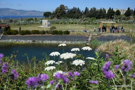 Parco Ecolandia Il nostro fotoreporter ci porta alla scoperta di una bella realtà nella città di Reggio Calabria