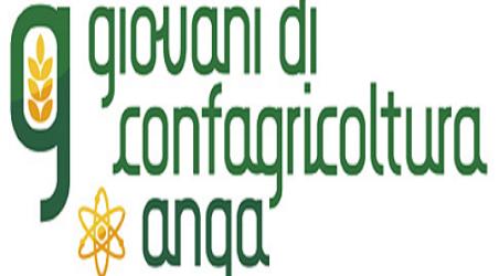 """""""Cantiere Calabria"""", approvazione giovani Confagricoltura """"La condizione giovanile merita uno specifico e duraturo approfondimento"""""""