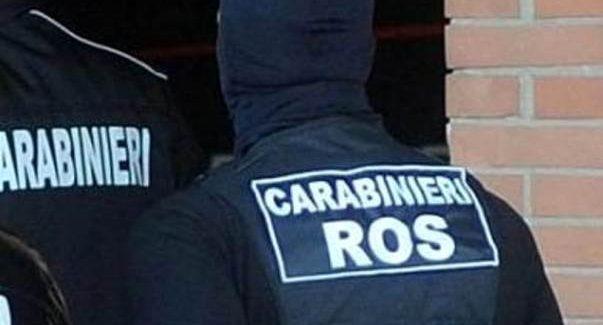 Colpo alla Sacra Corona Unita: collegamenti con i Bellocco Indagini dei Carabinieri del Ros su associazione mafiosa, traffico di stupefacenti ed estorsione