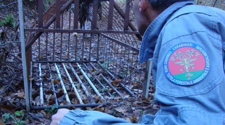 Sequestrata strada sterrata realizzata in area boschiva Un uomo è stato denunciato anche per il taglio di alcuni alberi ed è inoltre ritenuto responsabile della sistemazione di una trappola per la cattura di cinghiali