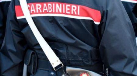 Reperti archeologici in una stalla: denunciato un uomo Operazione dei Carabinieri. Il commento della politica