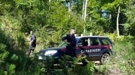 Si perdono mentre cercano funghi, salvati dopo ore I due uomini sono stati ritrovati in buone condizioni di salute