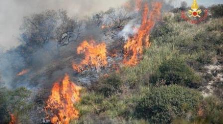 Incendio lambisce alcune abitazioni nel Catanzarese Intervento tempestivo dei Vigili del Fuoco