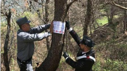 Inchiesta su incendi, sequestrati alcuni boschi Provvedimento emesso per impedire la manomissione di tracce e luoghi