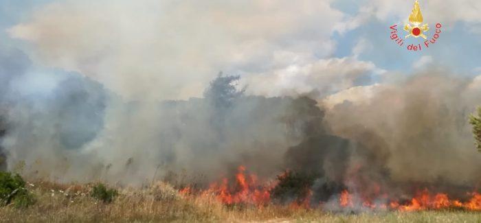Sellia Marina, vasto incendio alle porte della città Grazie al pronto intervento dei vigili del fuoco è stato domato