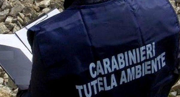 Rifiuti, sequestrata isola ecologica a Vibo Valentia Operazione dei Carabinieri della locale stazione e del Nucleo operativo ecologico di Reggio Calabria