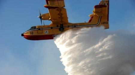 Bosco in fiamme per diverse ore nel territorio calabrese Il rogo ha lambito alcune abitazioni. In azione le squadre dei Vigili del Fuoco