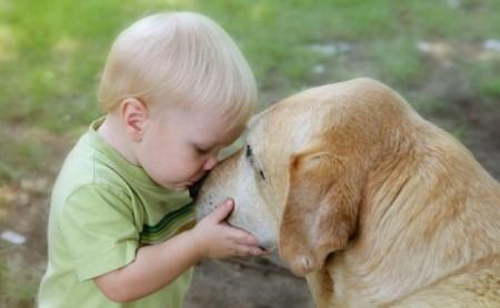Cani e bambini, i consigli per una serena convivenza Ecco il prontuario dell'Aidaa