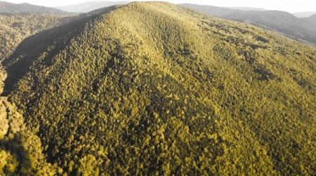 Divieto svolgimento attività alpinistiche Parco Aspromonte L'obiettivo è salvaguardare le specie avifaunistiche di particolare interesse conservazionistico