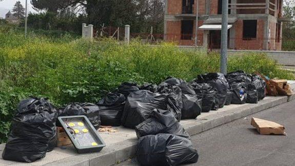 """Taurianova e gli """"sporcaccioni"""" d'importazione I rifiuti dopo i bagordi circensi che la città deve subire"""