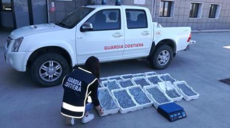 Calabria, sequestro 130 chili prodotto ittico sottomisura Denunciate due persone. Sanzioni amministrative per un totale di diecimila euro