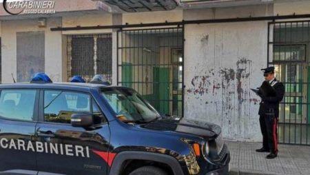 """Caso del """"gatto ucciso"""" in una scuola a Gioia Tauro Nota del difensore del collaboratore scolastico, avv. Raimondo Paparatti"""