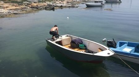 Pesca illegale ricci di mare, una persona denunciata Operazione della Capitaneria di Porto