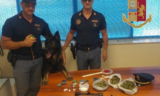 Controlli Carabinieri, scoperta droga grazie a cane poliziotto La sostanza stupefacente è stata posta sotto sequestro a carico di ignoti