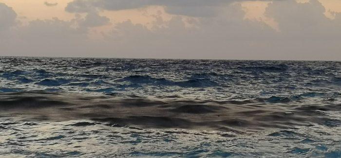 Quindi il mare di Palmi era (ed è) inquinato? La fogna c'è? A fine estate (sic!) grazie a uno studio del Circolo Armino, le acque (torbide) sono state mosse