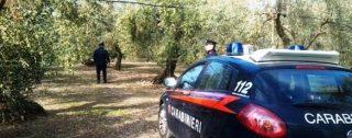 Uomo ucciso a Reggio Calabria, iniziano a delinearsi i contorni dell'omicidio