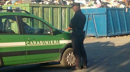 Violazione norme sui rifiuti, sequestrata isola ecologica Operazione dei Carabinieri Forestale