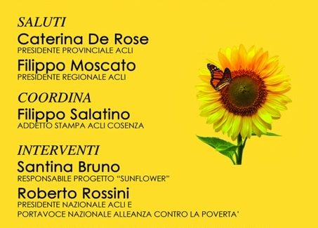 """Le Acli Provinciali di Cosenza presentano il progetto """"Sunflower"""" Un girasole contro la violenza sulle donne"""