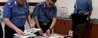 """Operazione""""Dike"""", redditi di cittadinanza """"fantasiosi"""", altre 18 denunce dei carabinieri di Reggio Calabria: dalla moglie del boss al 41bis, alla residenza in un rudere abbandonato. VIDEO"""