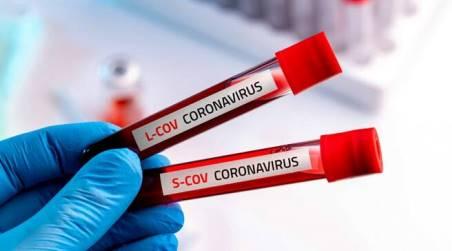 Coronavirus Calabria, nessun nuovo caso positivo Il bollettino della Regione. A Reggio Calabria, situazione invariata, nessun nuovo positivo