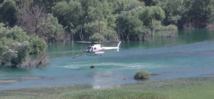 """Incendi boschivi, uomini e mezzi di """"Calabria Verde"""" intervengono a Bova (RC) e Mottafollone (CS)"""